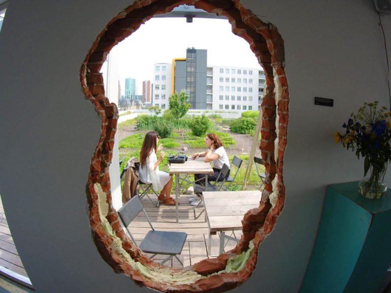 Travellers Insight Reiseblog Rotterdam Op Het Dak