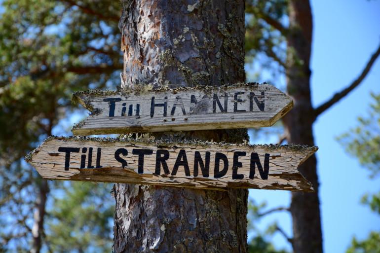 An einem Baum wurden zwei Wegweiser aus Holz befestigt, die den Weg zum Strand bei Stockholms Schärengarten Sandhamn weisen.