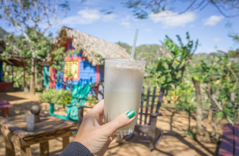 Kuba Rundreise Viñales Travellers Insight Reiseblog