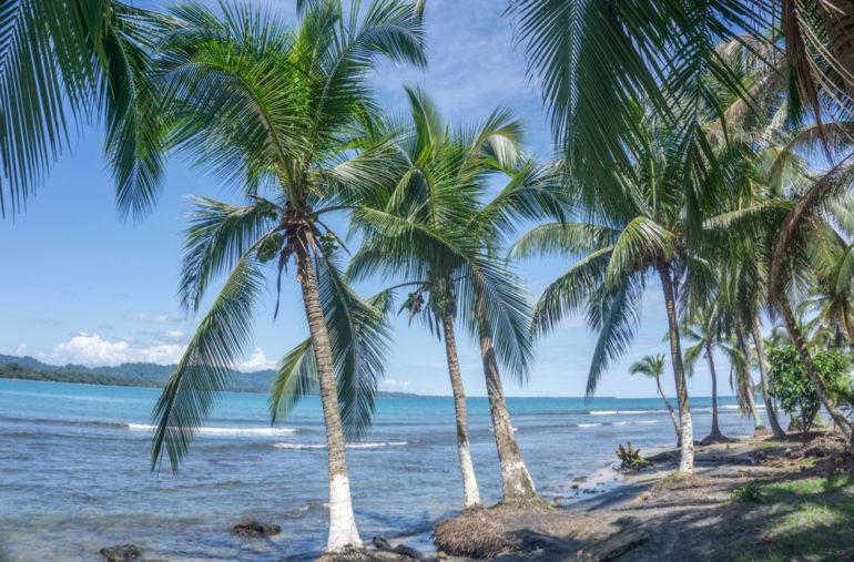 Travellers Insight Reiseblog Costa Rica Puerto Viejo