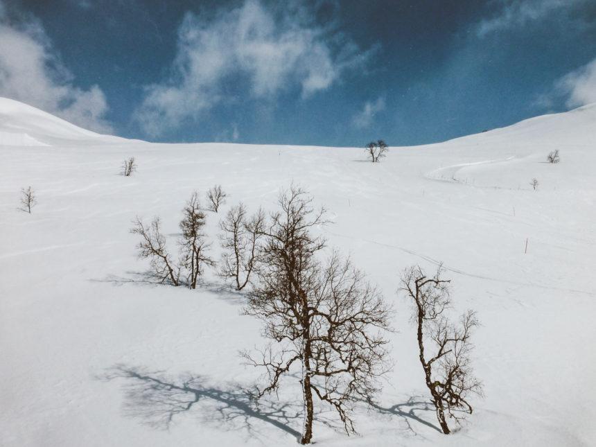Travellers Insight Reiseblog Skifahren Norwegen Myrkdalen