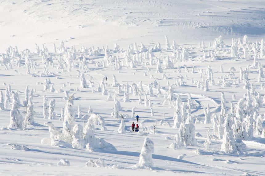 Travellers Insight Reiseblog Skifahren Norwegen Trysil