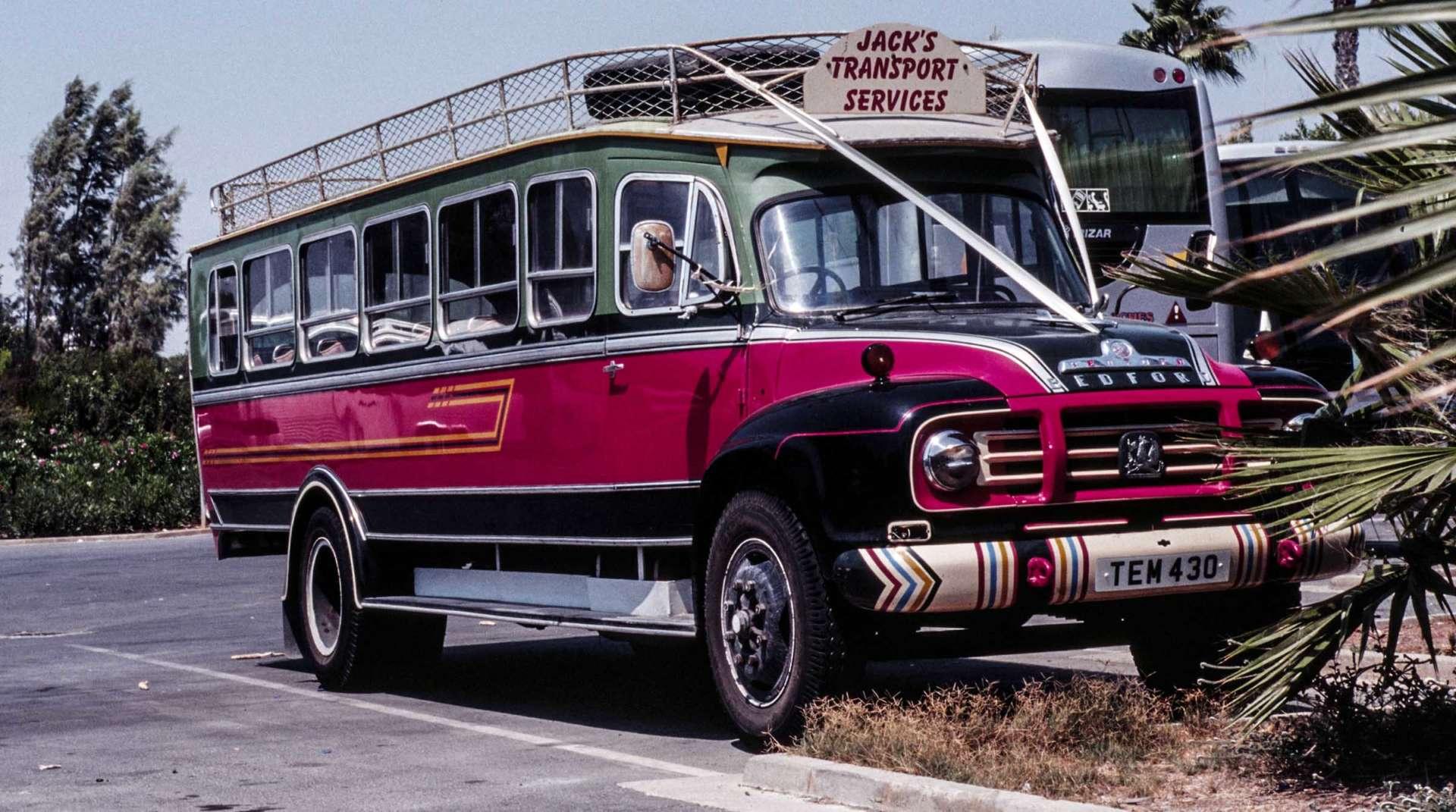 Reifer großer Esel im Bus