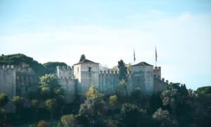 Blick auf die Burg mit Bäumen im Vordergrund.