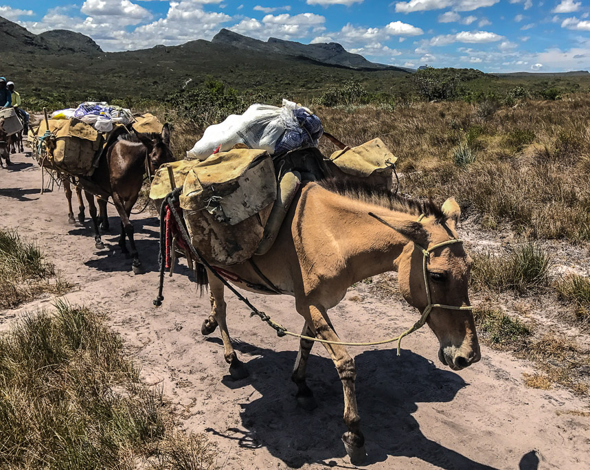 Travellers Insight Reiseblog Chapada Diamantina Vale do Pati