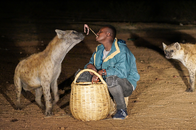 Äthiopien Harar Travellers Insight Reiseblog Hyänen