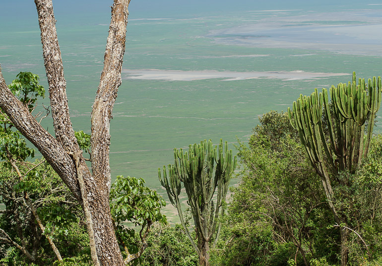 Tansania Safari Travellers Insight Reiseblog Ngorongoro Krater