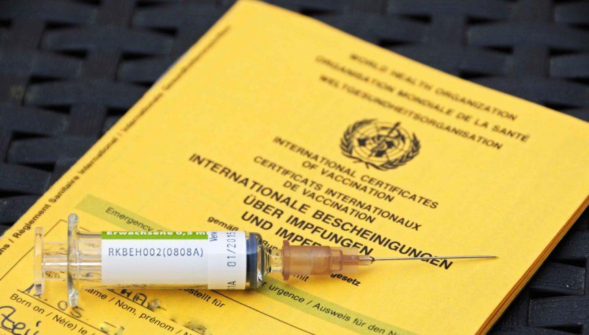 Weltreise vorbereiten Impfpass