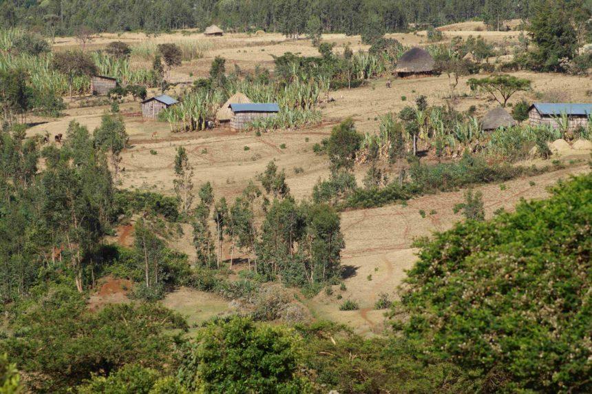 Travellers Insight Reiseblog Kaffee Äthiopien Landschaft