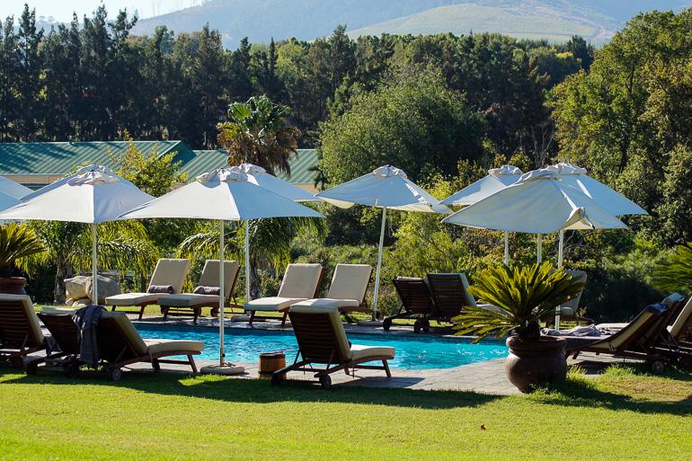 Travellers Insight Reiseblog Südafrika Wein Weingut Cultivar