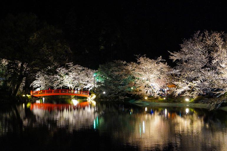Travellers Insight Reiseblog Japan Tokio Garyu Park Kirschblüte in der Nacht
