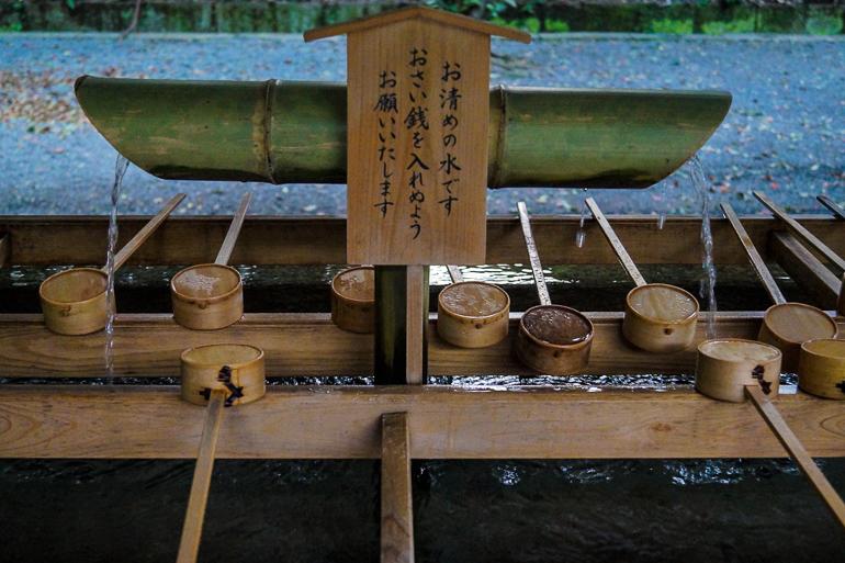 Travellers Insight Reiseblog Japan Tokio Wasserreinigung Meiji Schrein