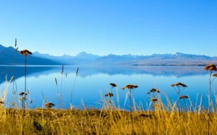 Travellers Insight Reiseblog Neuseeland