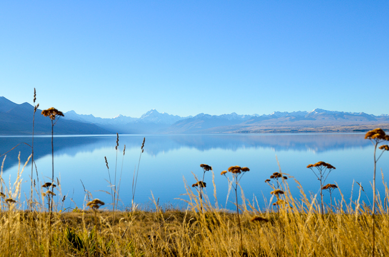 Travellers Insight Reiseblog Neuseeland Reise Lake Pukaki