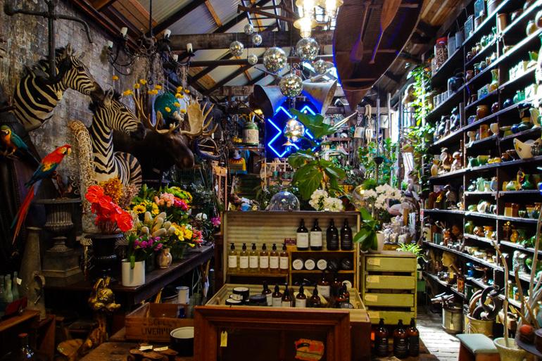 Travellers Insight Reiseblog Sydney Redfern Seasonal Concepts