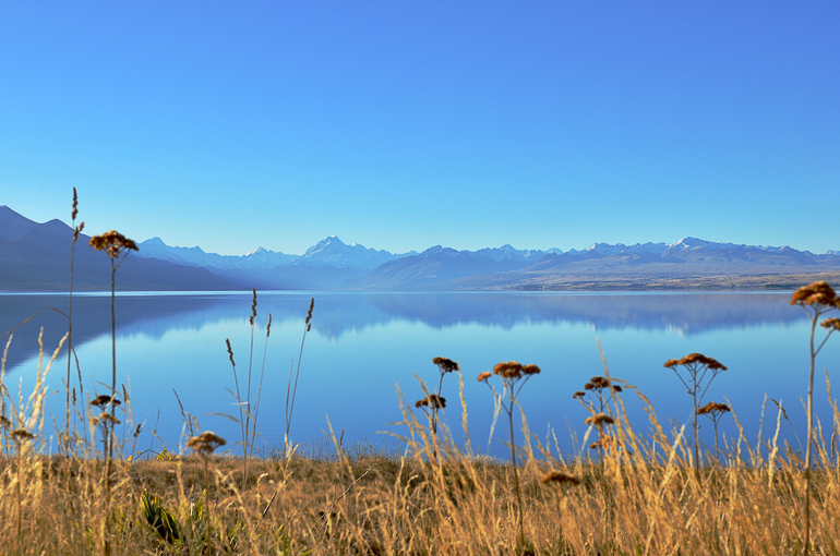 Travellers insight Reiseblog Neuseeland Südinsel Roadtrip Pukaki