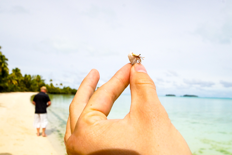 Travellers Insight Reiseblog Cook Inseln Aitutaki Krabbe in Muschel
