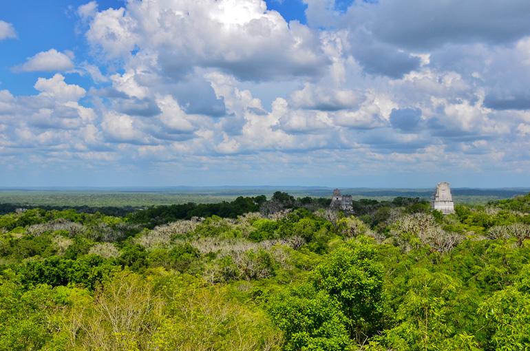 Guatemala-Tikal-Tempel-Ausblick