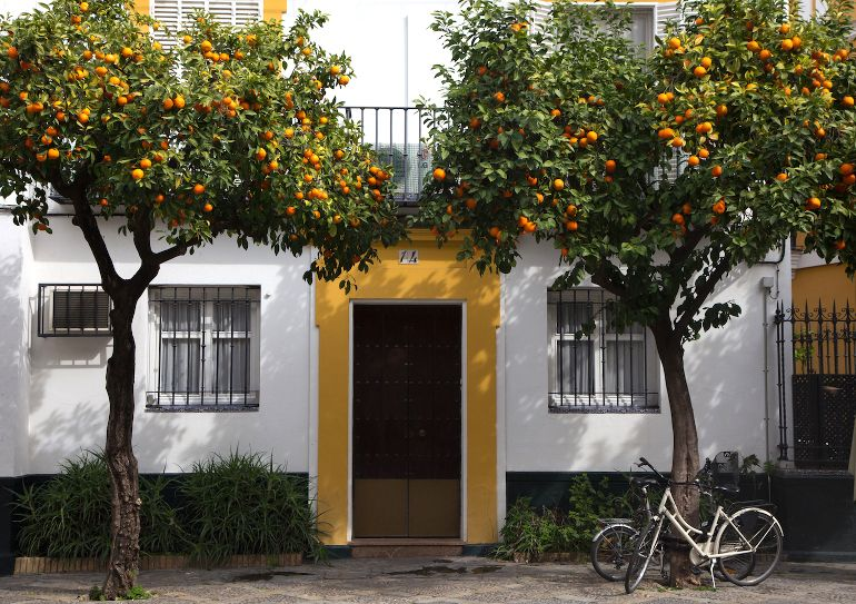 Travellers Insight Reiseblog Sevilla Stadtbild
