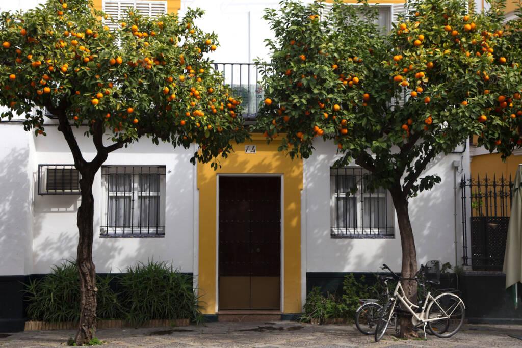 Sevillas Stadtbild mit süßen Häusern und Orangenbäumen ist bezaubernd.