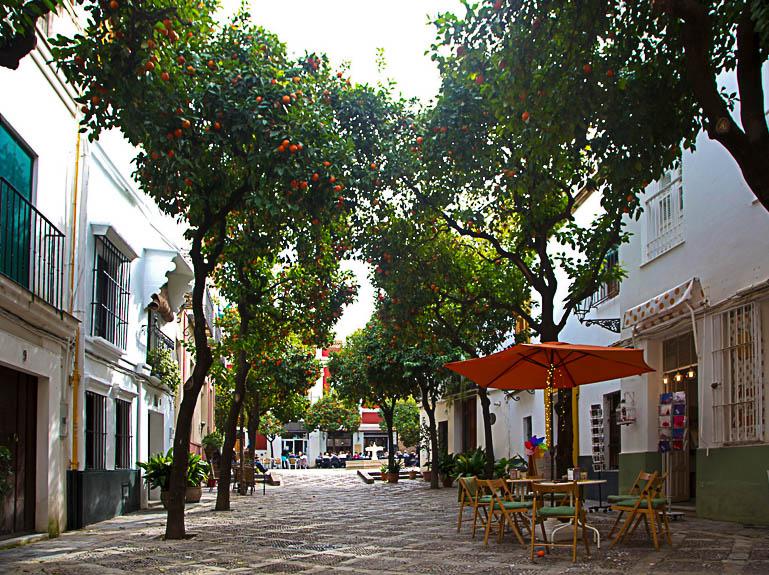 Travellers Insight Reiseblog Sevilla Alcazar Orangenbäume