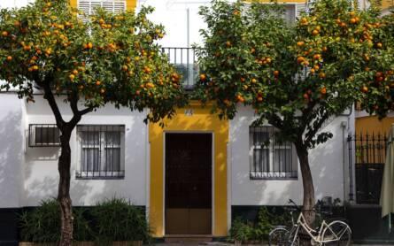 Travellers Insight Reiseblog Kategoriebild Spanien