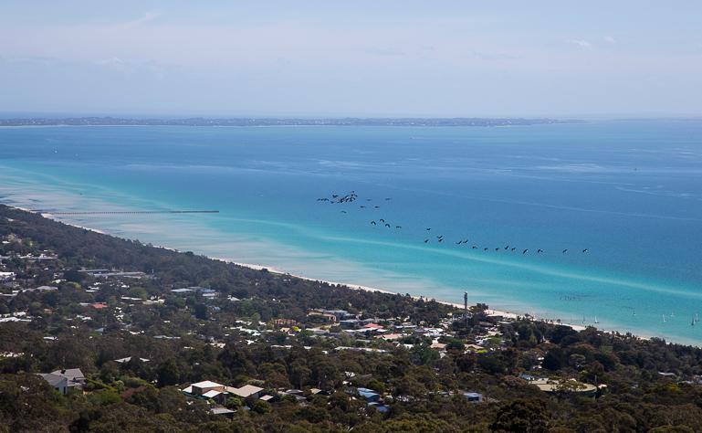 Travellers Insight Reiseblog Yarra Valley Mornington Peninsula