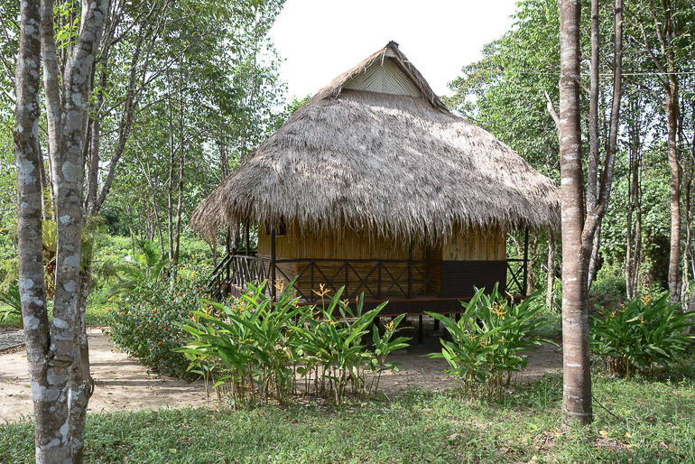 Travellers Insight Reiseblog Reisetipps Kambodscha Cardamom Mountains Chi Path Sun Bear Bungalows