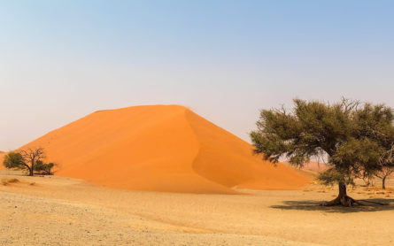 Travellers Insight Reiseblog Land Namibia