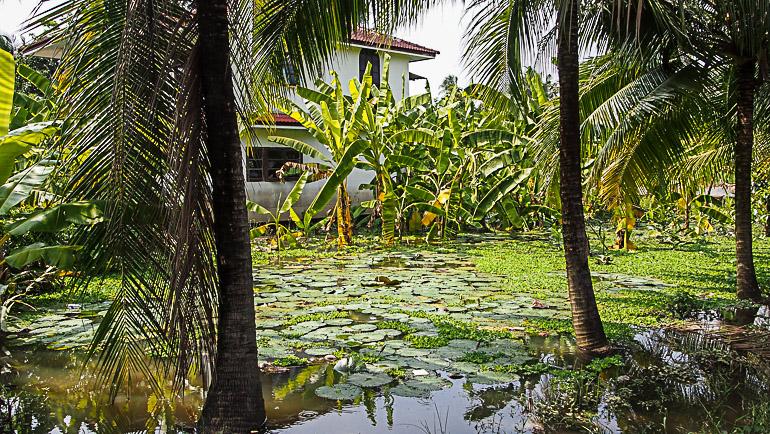 Travellers Insight Reiseblog Bangkok Geheimtipps Häuschen Koh Kret