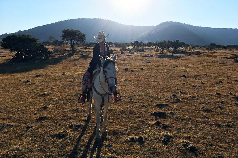 Travellers Insight Reiseblog Mexiko-Stadt Tagesausflug Ausritt
