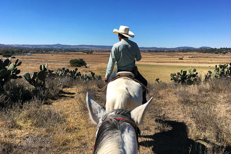 Travellers Insight Reiseblog Mexiko-Stadt Tagesausflug Rancho las Cascadas