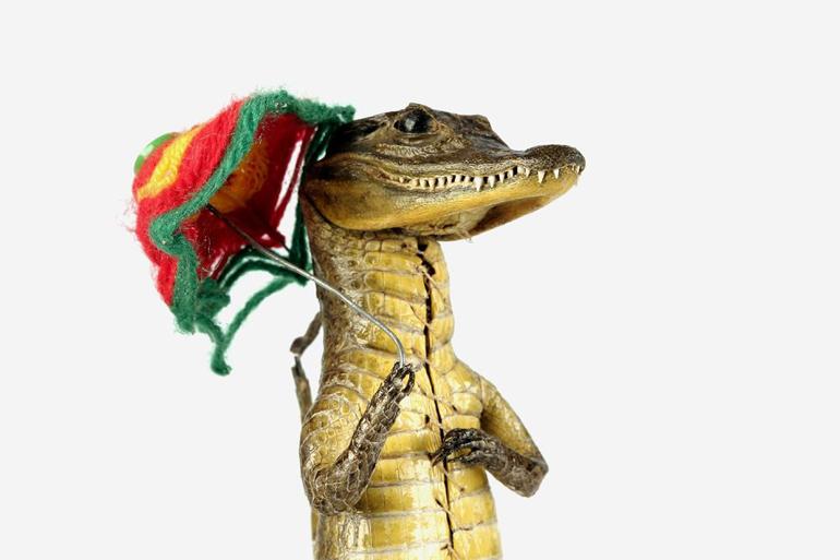 Krokodilbaby als Souvenir