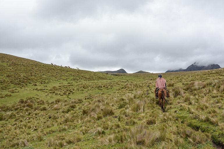 Mach' es wie die Chagras, die ecuadorianischen Cowboys - durch die Weiten der Anden reiten.