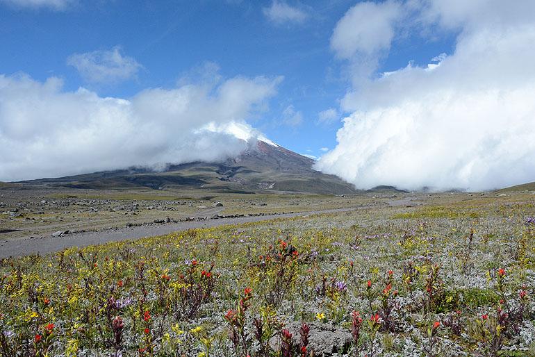 Mit knapp 5.900 Metern ist der Cotopaxi einer der höchsten aktiven Vulkane der Welt.