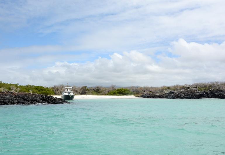 Und noch ein Traumstrand, von dem man nicht mehr weg will: die Rosa Blanca Bay auf San Cristóbal.