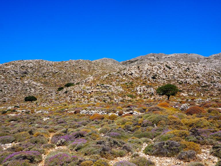 Karpathos besteht fast ausschließlich aus Gebirgslandschaften.