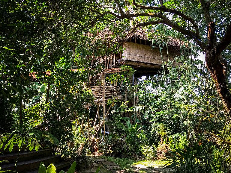 Bukit Raya Guesthouse: Baumhaus