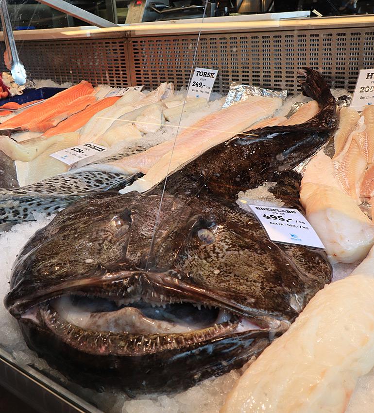 Seeteufel und andere Fänge der lokalen Fischer gibt es auf dem Fischmarkt zu bestaunen.