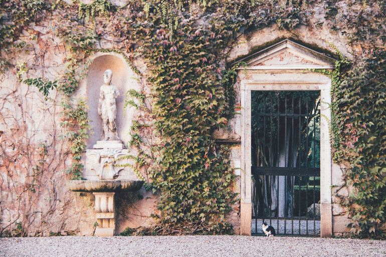 Katze im Giardino Giusti in Verona