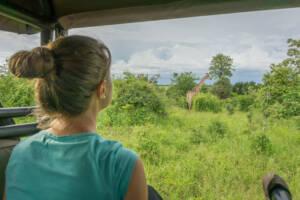 Hinterkopf einer Frau, im Hintergrund eine Giraffe auf einer Wiese