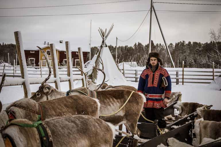 Finnisch Lappland: Ein Rentiergehege in dem ein Mann steht.