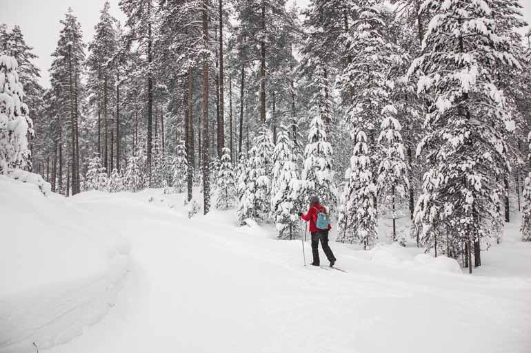Eine Frau beim Langlaufen in Finnisch Lappland.
