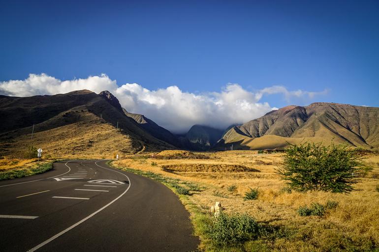Die Straßen von Hawaii sind umzäunt von vulkanischen Gesteinen hinter denen sich kleine Wölkchen zu verstecken scheinen.