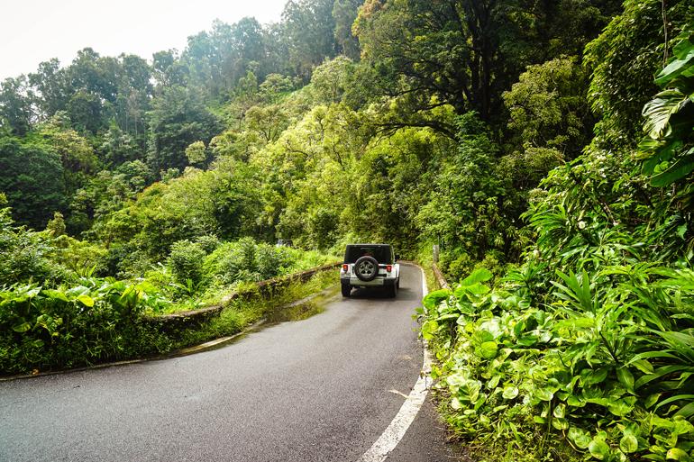 Hawaii: Jeep auf einer Straße durch die Natur