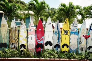 Hawaii: Surfbretter