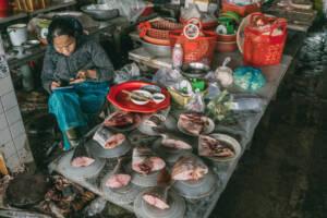 Ho Chi Minh City: Fischmarkt in Chinatown