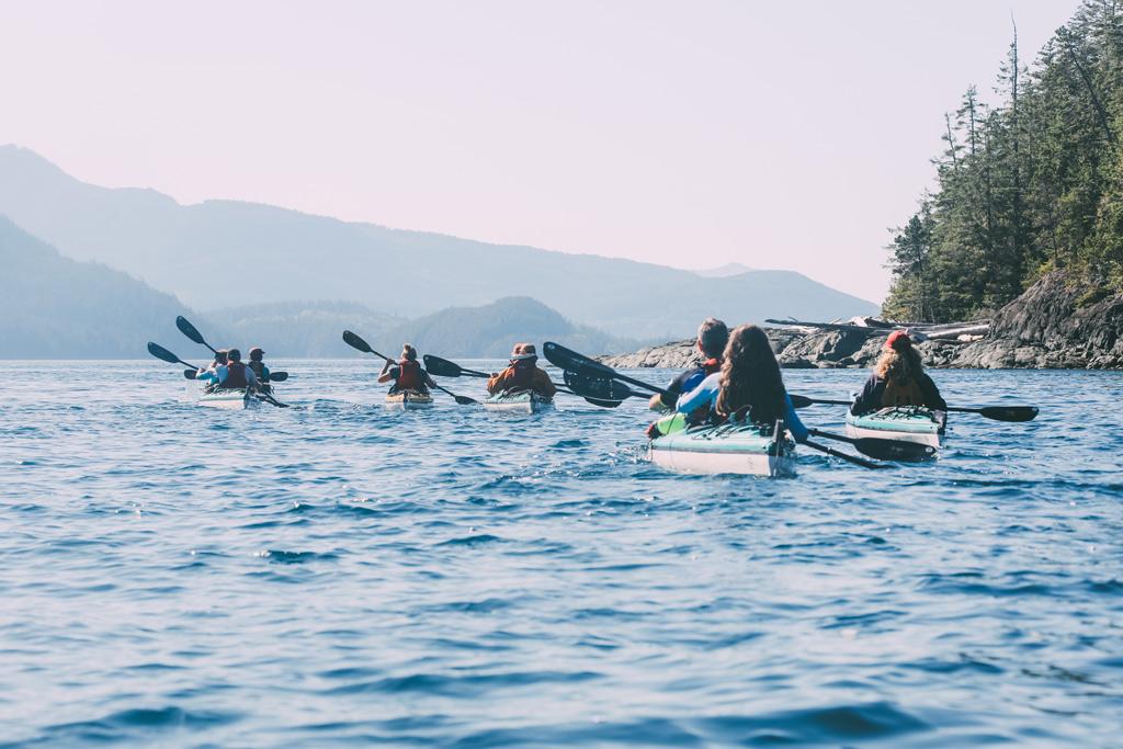 Whale Watching Vancouver Island: Einige Kajaks fahren hintereinander auf dem Wasser.