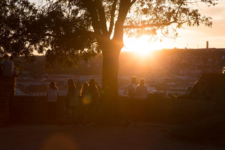 Ein Baum durch den der Sonnenuntergang scheint, mit Personen eben dran.