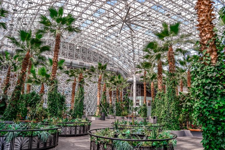 Chicago: Ein Glaspavillon mit hohen Palmen darin.
